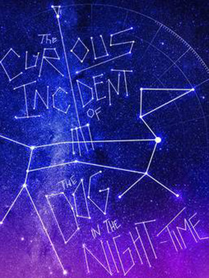 The Curious Incident of the Dog in the Night-Time Poster