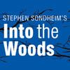 Into The Woods, Cahn Auditorium, Chicago