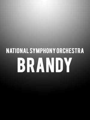 National Symphony Orchestra - Brandy Poster