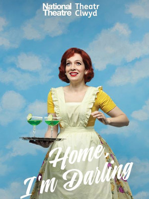 Home, I'm Darling Poster
