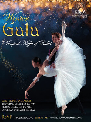 Winter Gala: A Magical Night of Ballet Poster