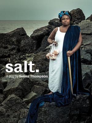 Salt. Poster