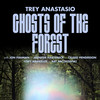 Ghosts of the Forest Trey Anastasio, Palace Theatre Albany, Albany