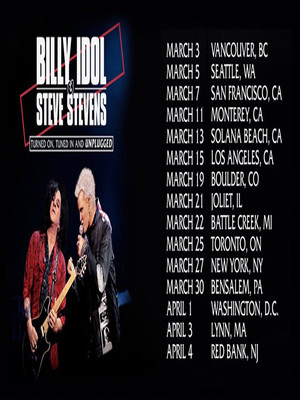 Billy Idol and Steve Stevens Poster