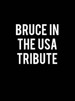 Bruce In The USA Tribute Poster