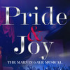Pride and Joy The Marvin Gaye Musical, Fisher Theatre, Detroit