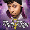 Purple Reign The Prince Tribute Show, Tropicana Theater, Las Vegas