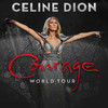 Celine Dion, Toyota Center, Houston
