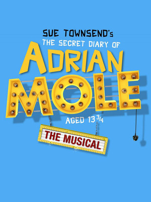 The Secret Diary of Adrian Mole Aged 13 3/4 at Ambassadors Theatre