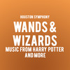 Houston Symphony Wands and Wizards, Jones Hall for the Performing Arts, Houston
