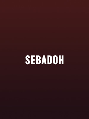 Sebadoh at The Ready Room St. Louis