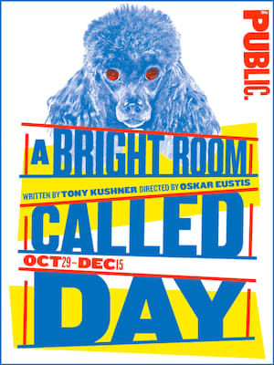 A Bright Room Called Day Poster