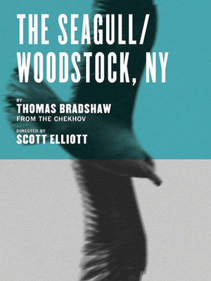 The Seagull/Woodstock NY Poster