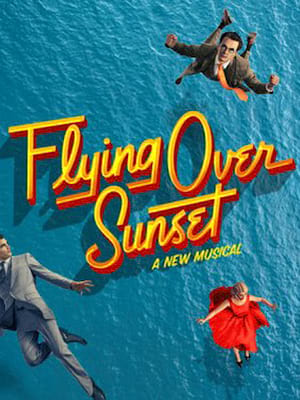 Flying Over Sunset Poster