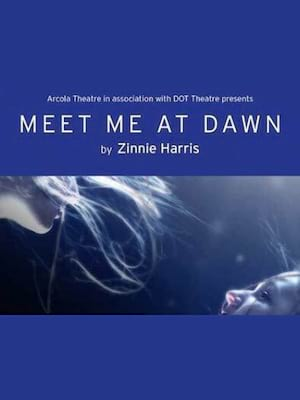Meet Me At Dawn at Arcola Theatre