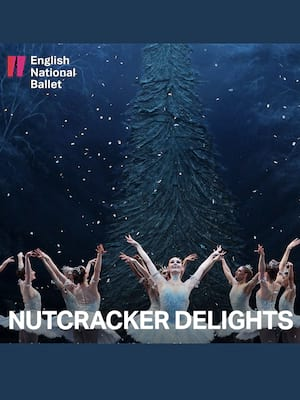 Nutcracker Delights Poster